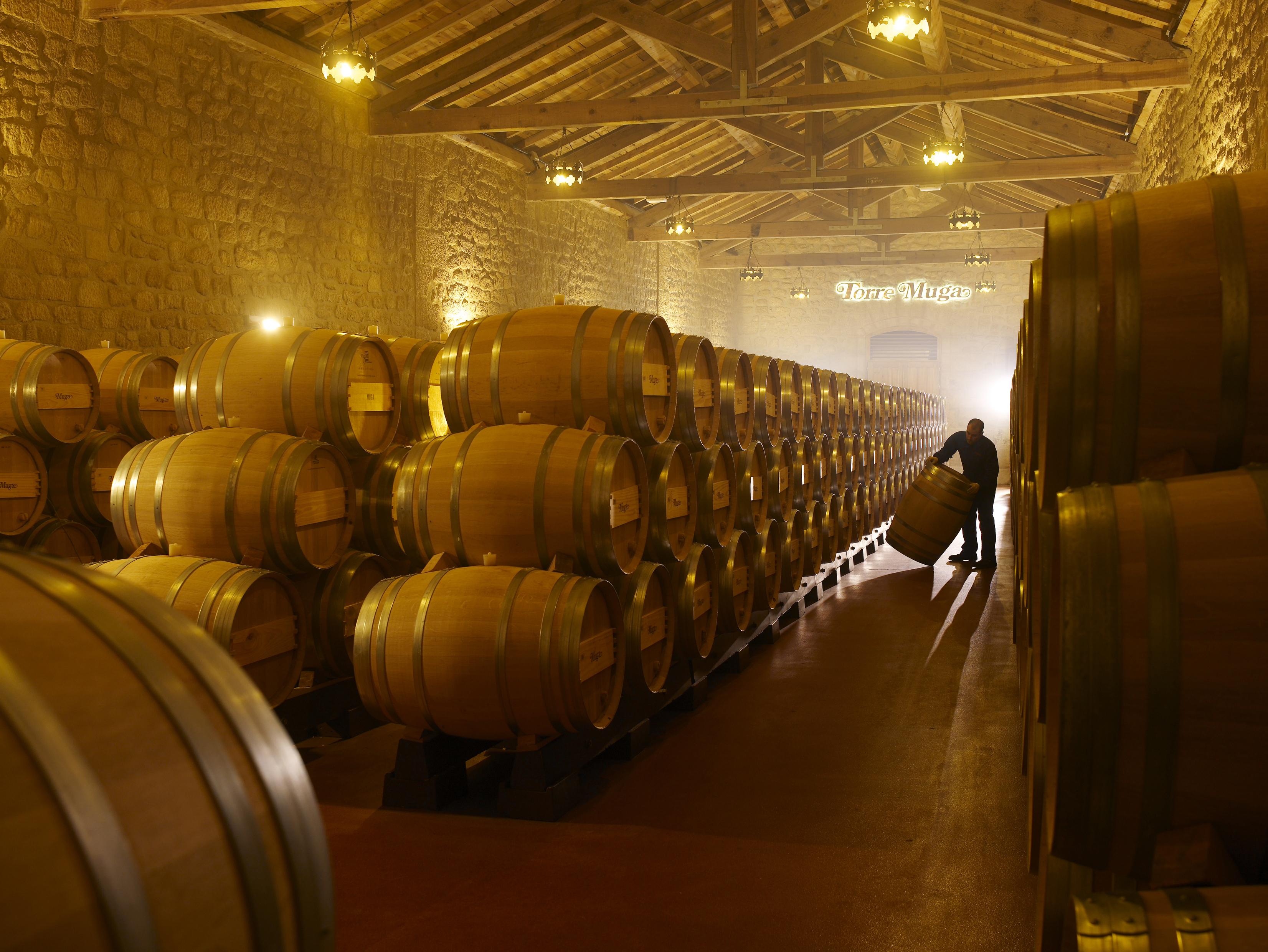 A Torre Muga borok külön érlelőtermet kaptak.